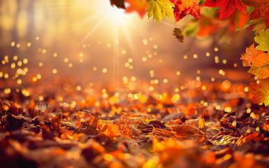 Hintergrund mit herbstlicher Szene im Wald mit fallenden Blättern und untergehender Sonne