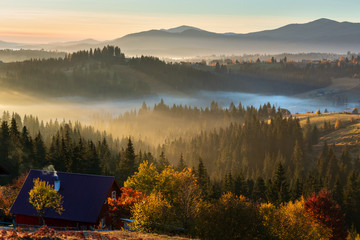 Early morning misty autumn Carpathian mountain, Ukraine.