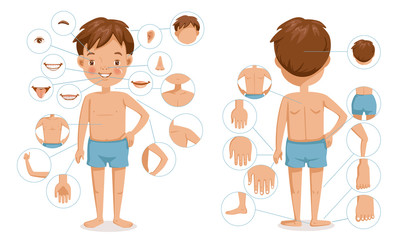 Boy body front view and rear view. Children with different parts of the body for teaching. Body details.The diagram shows the various external. parts of the body. Cartoon vector illustration isolated