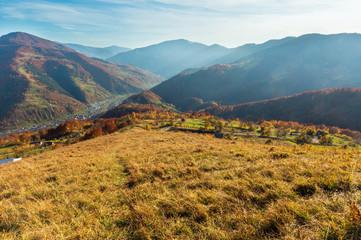 Poster Crimson Autumn Carpathian mountain, Rakhiv, Ukraine
