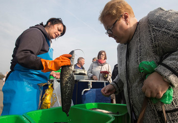 Street seller shows a catfish to a customer at a market during the annual autumn agriculture fair in Minsk