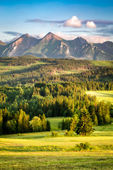 Zelfklevend Fotobehang Bergen Stunning sunset at Belianske Tatra mountains in summer