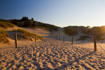 Dunes in slowinski national park, Poland