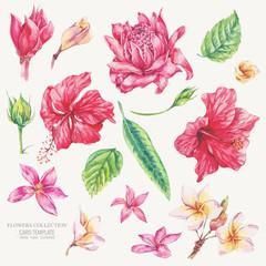 Vector set of vintage floral tropical natural elements