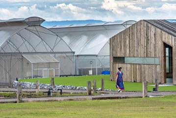 hydro organic building farm, healthy woman in hydroponic vegetable plantation.