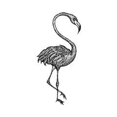 Dotwork Pink Flamingo