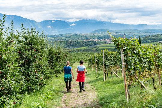 zwei Wanderer durch Weinreben in Südtirol