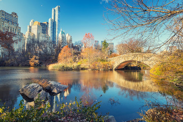 Fototapete - The pond in Central park in New York City at autumn day, USA
