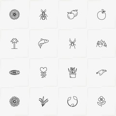 Nature line icon set with bug, apple and fish