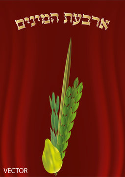The Four Species for Sukkot. Lulav. etrog.   Translation of the text = The Four Species