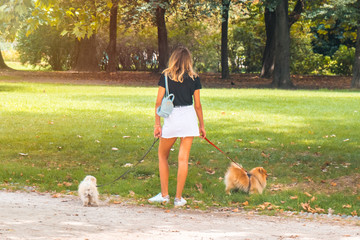 Beautiful young woman with two small dogs in the park