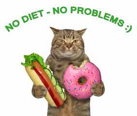 "The cat is holding a hot dog and a donut. Above him there is an inscription "" no diet - no problems ""."