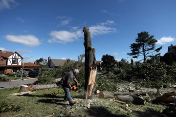 A man cuts a damaged tree after a tornado hit the Mont-Bleu neighbourhood in Gatineau