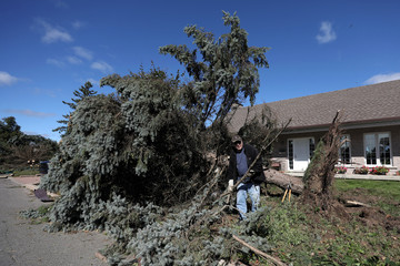 A man removes branches from a damaged tree after a tornado hit the Mont-Bleu neighbourhood in Gatineau