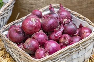 Marktstand mit roten Zwiebeln im Korb auf Stroh