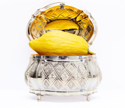 Etrog with Silver box White background