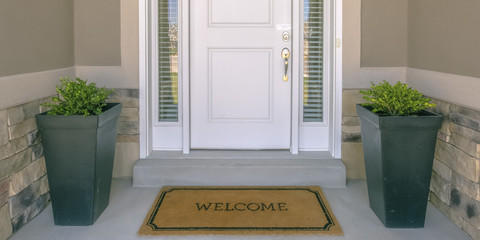 Front door with doormat plants and glass panel