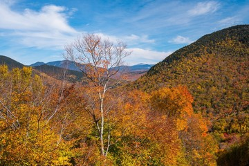 Fall Color in Vermont