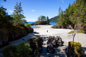 Fototapete - Beautiful view on the Pacific Ocean Coast during a sunny summer day. Taken in San Josef Beach, Cape Scott, Vancouver Island, BC, Canada.
