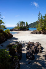Beautiful panoramic view of sandy beach on Pacific Ocean Coast. Taken in San Josef Bay, Cape Scott Provincial Park, Northern Vancouver Island, BC, Canada.
