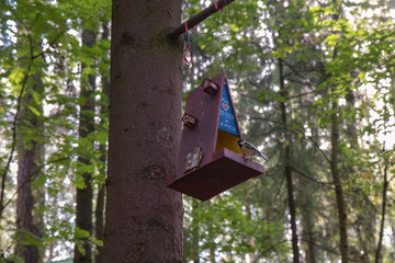 Feeders for birds in the city park