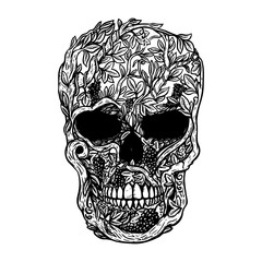 Hand Drawn Human Skull Made from grapevine. Design element for poster, t shirt.