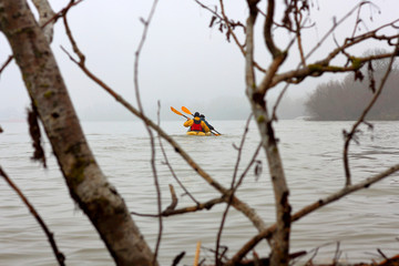 Kayaking in the winter Danube river. View through tree branches