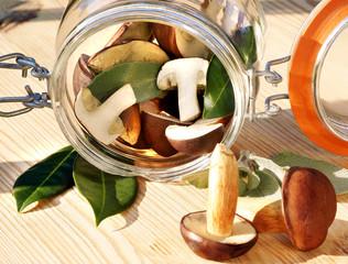 Mushrooms, Pilze, Waldpilze, im Glas, Textraum, copy space