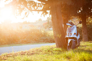 Steel motor scooter is parked on grass lawn in Tuscany countryside. Electric motorcycle under tree. Moped is modern personal transport in Italy for rent. Sunset italian background, free space for text