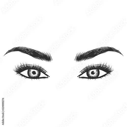 24eed84b26a Beauty lash and brow studio logo. Typography poster. Eye, eyebrow and long  eyelashes. Vector illustration for gift card. Black on white background.