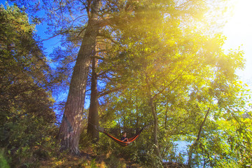 Camping in a hammock. Little girl is resting in a camouflage hammock in a forest near lake at warm autumn sun. Travel and adventure