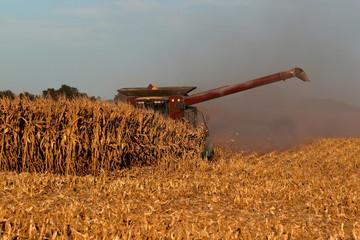 2018 Midwest Harvest 0015