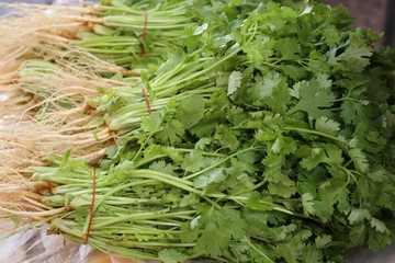coriander at the market