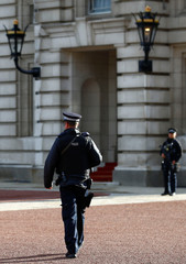Armed police patrol the grounds of Buckingham Palace after a man was arrested at the visitor entrance of Britain's Queen Elizabeth's residence in London