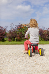 Kind auf Dreirad in Garten. Little child on tricycle in garden.