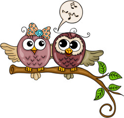 Cute couple of owls singing