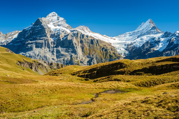 Gorgeous landscapes during the famous hiking trail from First to Grindelwald (Bernese Alps, Switzerland). You can have great views on Eiger, Monch and Jungfrau and the Bachalpsee along the way.