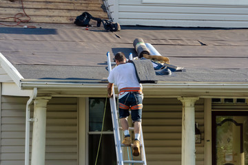 roofers are changing roof shingles