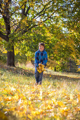 Smiling boy throwing autumn leaves on park