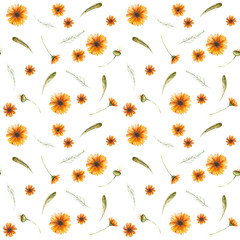 Watercolor autumnal pattern of wild flowers