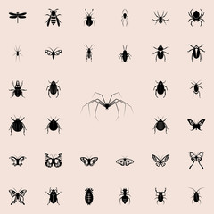 long-legged spider icon. insect icons universal set for web and mobile