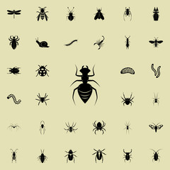 ant icon. insect icons universal set for web and mobile