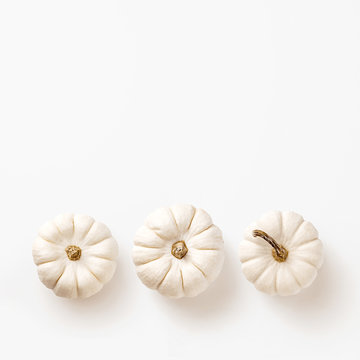 minimalist fall / autumn concept, card or background with three white pumpkins in a row on a white background - flat lay / top view