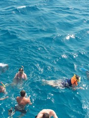 Divers in the Red Sea, Hurghada, Egypt, North Africa