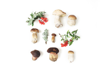 Autumn styled botanical arrangement. Composition of porcino mushrooms, Boletus edulis, rowan berries and lichen on white table background. Fall design, flat lay, top view.