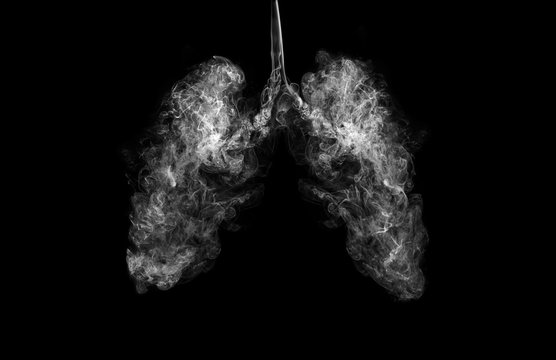 A concept image when smoke goes inside the lungs. Campaign for quitting smoking or living in a polluted area.