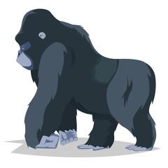 Gorilla walking side view.