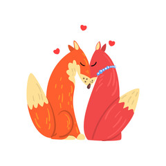 Couple of red foxes in love, two happy wild aniimals with hearts over their head vector Illustration on a white background
