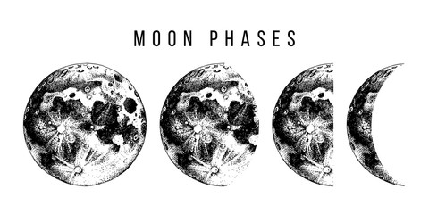 moon phases illustration