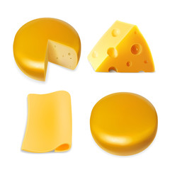 Cheese various types collection set. Realistic illustration